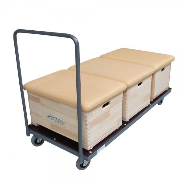 Transportwagen für 1- und 3-teilige Sprungkästen