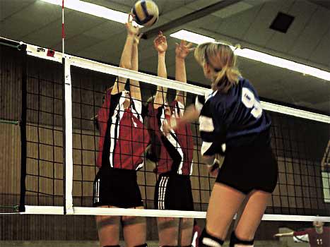 Volleyball-Turniernetze DVV I