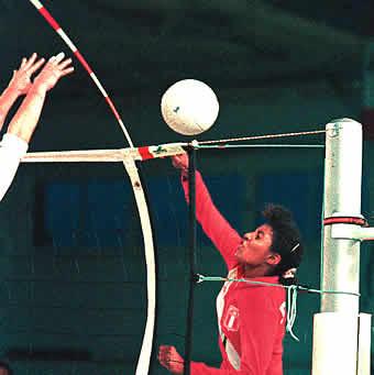 Volleyball Antennen